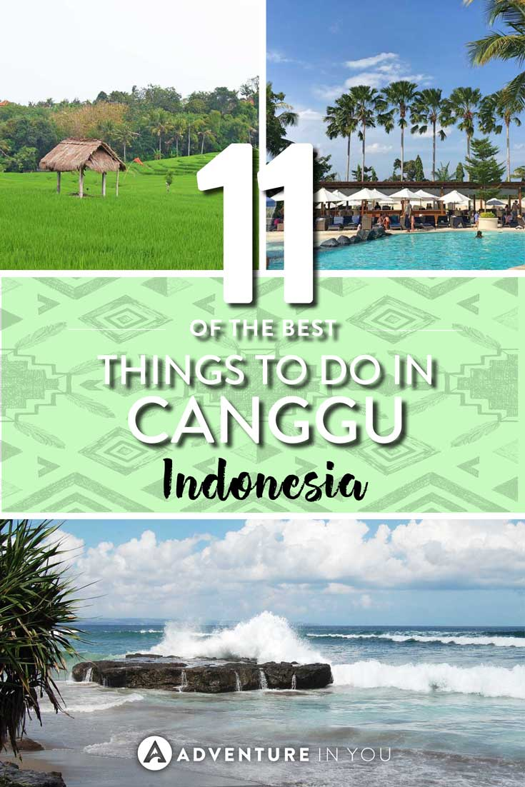 Canggu Bali | Looking for recommendations on things to do in Canggu Bali? Bali is considered the hipster area of Indonesia and is a favorite among surfers, digital nomads, and yogis. Here are our top recommendations on what to do in Canggu