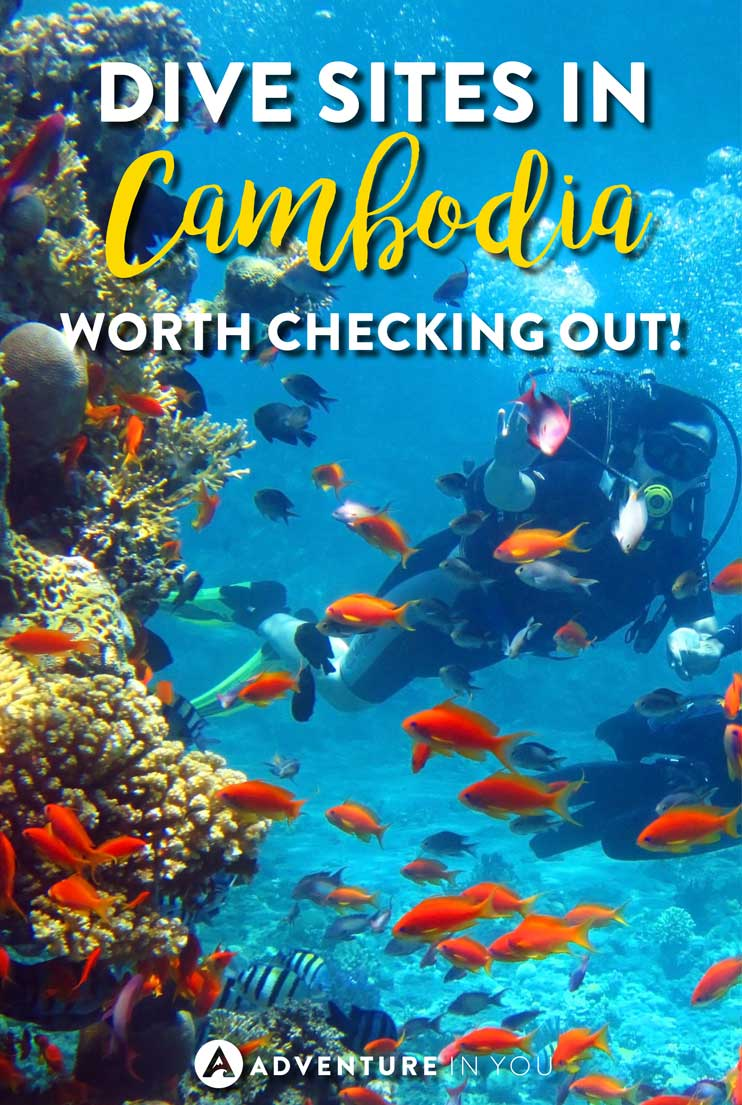 Cambodia Travel | Planning to go scuba diving in Cambodia? Check out our article featuring the best Cambodia dive sites!