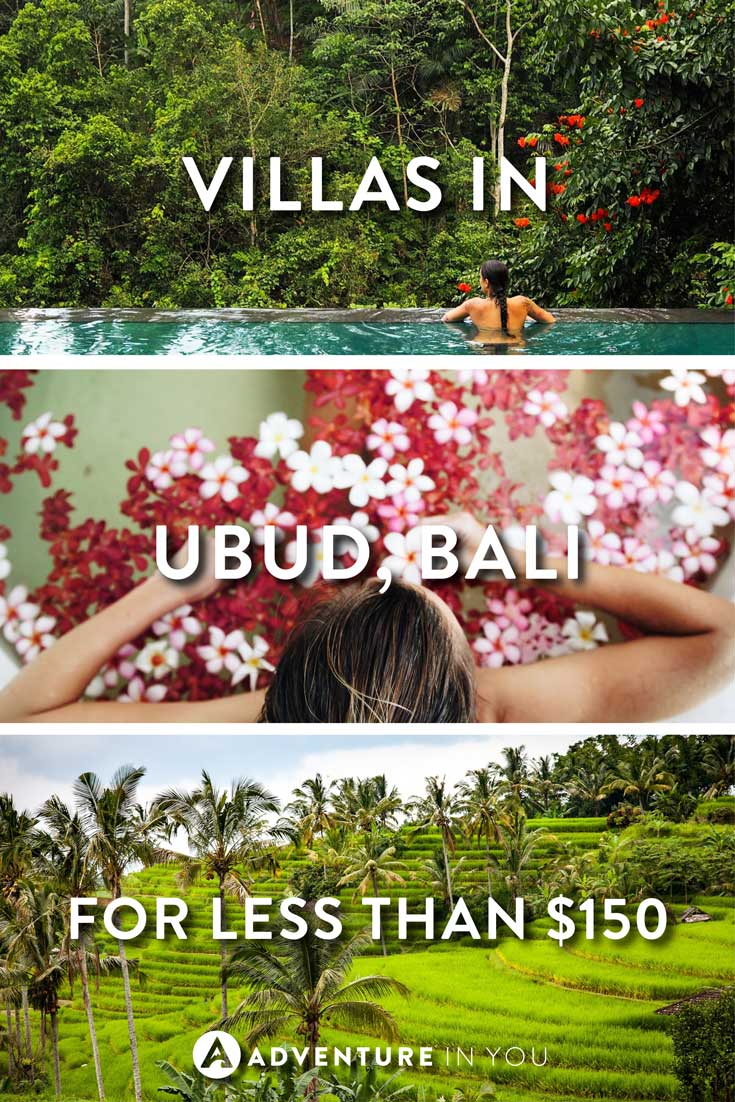 Ubud Bali | Looking for villas in Ubud, Bali? Our where to stay guide in Ubud will give you our top tips on the best places to stay in Ubud that won't break the bank.