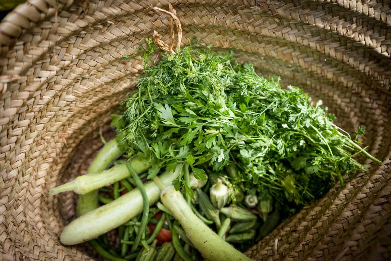 marrakesh cooking class produce