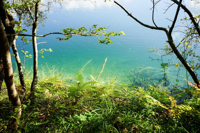plitvice-lakes-water