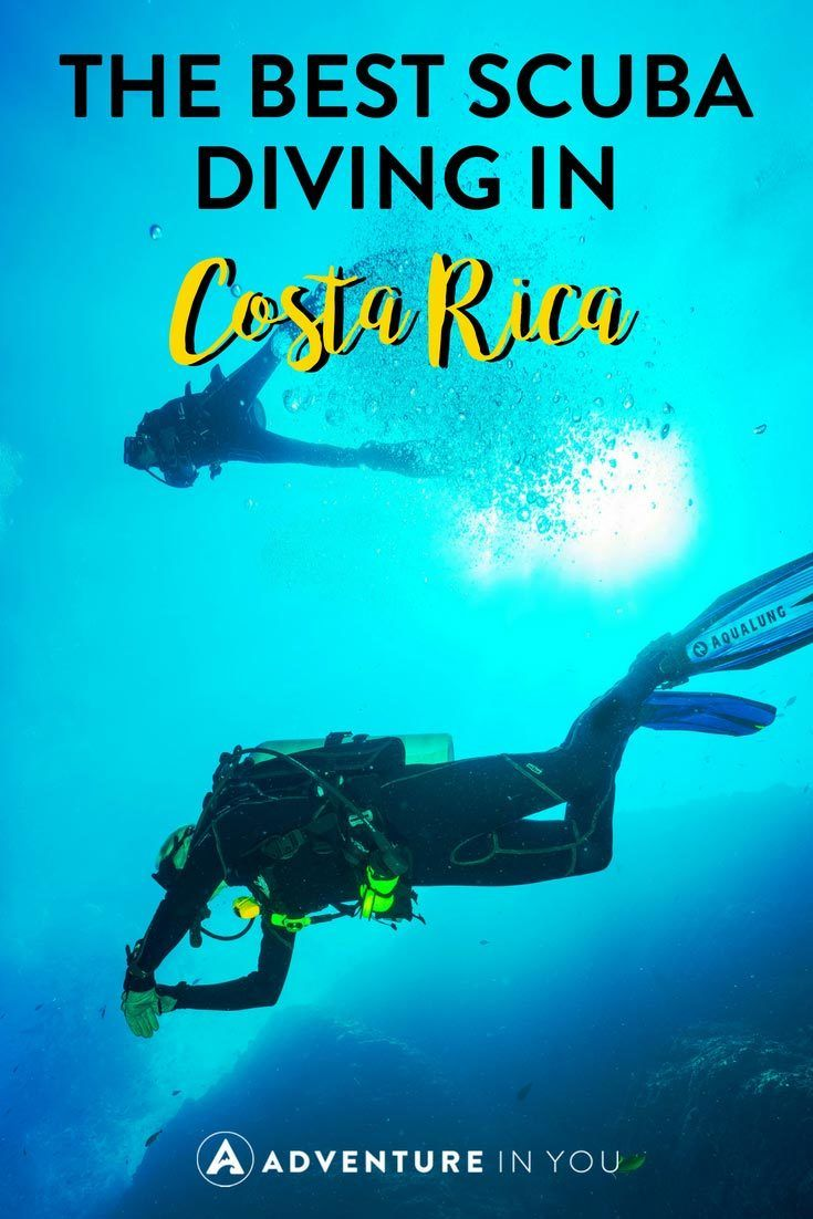 Diving in Costa Rica | Interested to find out about the different diving sites in Costa Rica? Here are a few of the best ones. Take a look at out article featuring all the different dive sites and what you can find in each place. #costarica #diving #divingcostarica