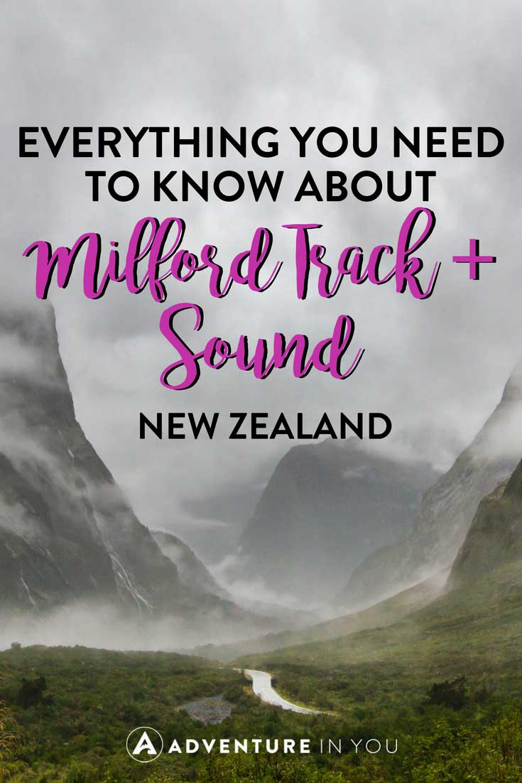 Milford Track New Zealand | Looking for information on Milford Track and Milford Sound New Zealand? Here are our top tips on how to take on this epic trek #newzleand #milfordtrack