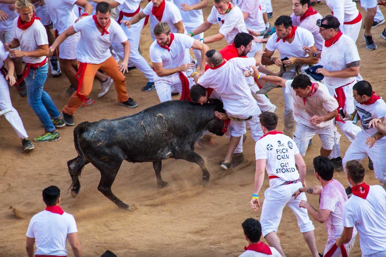 running of the bulls san fermin