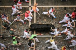 san-fermin-bulls