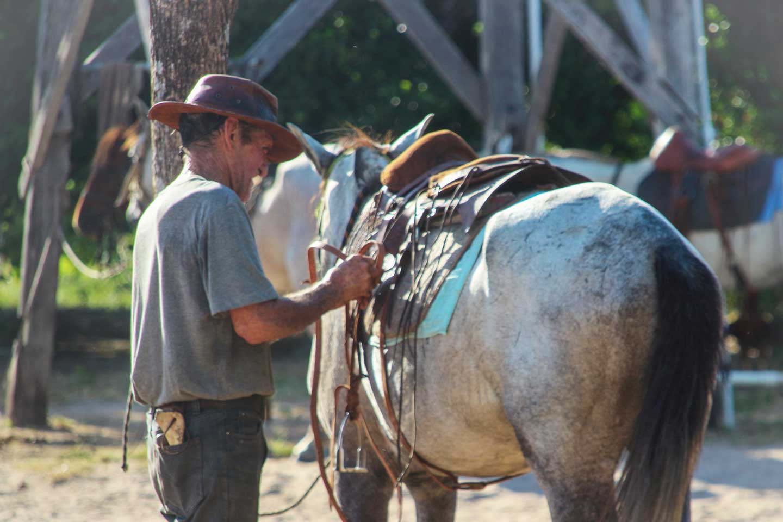 horse ranch guyana