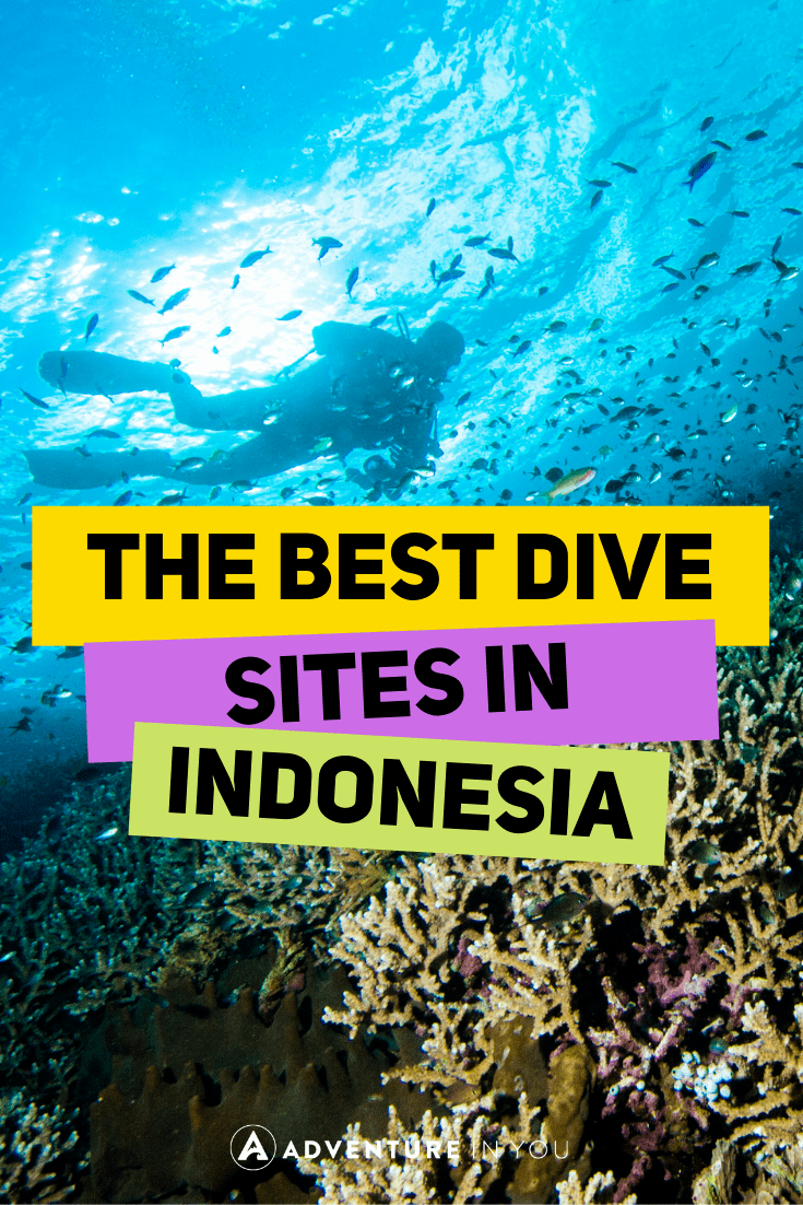 Diving in Indonesia | Looking for the best dive sites in Indonesia? Here are our top picks for diving in Bali, GIli Islands, Komodo, and more. #indonesia #scubadiving