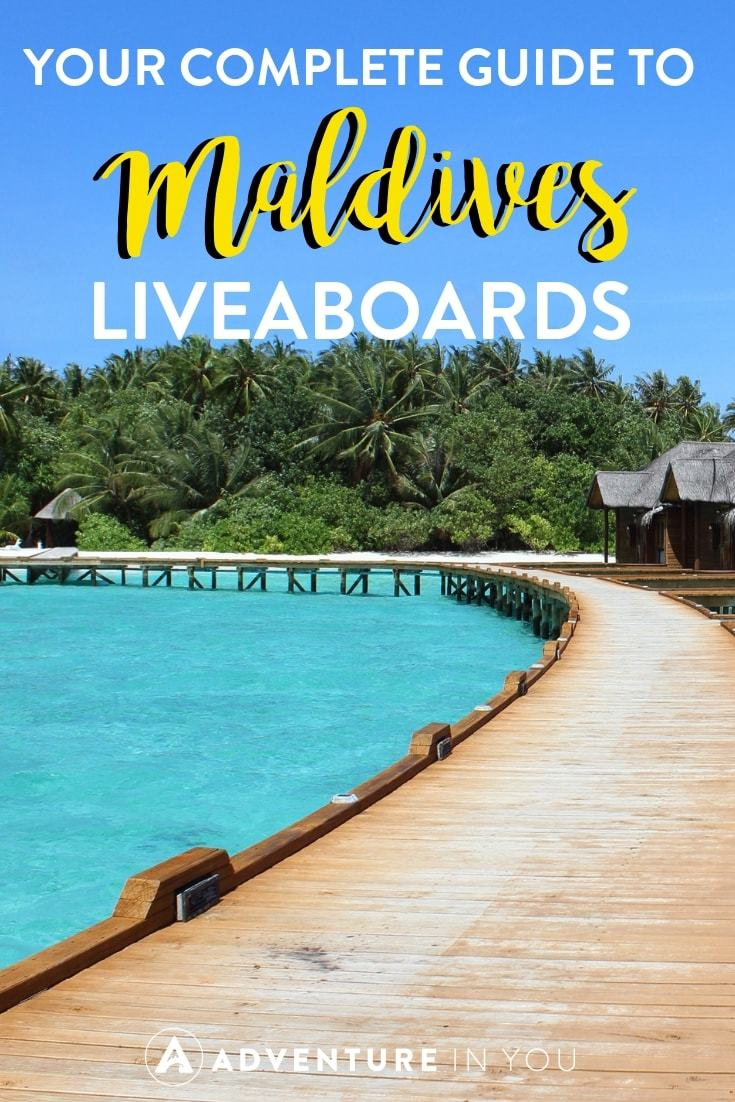 Diving in the Maldives | Complete Guide to Maldives Liveaboards. From comparing boats to choosing the best dive sites #maldives #liveaboard #scubadiving