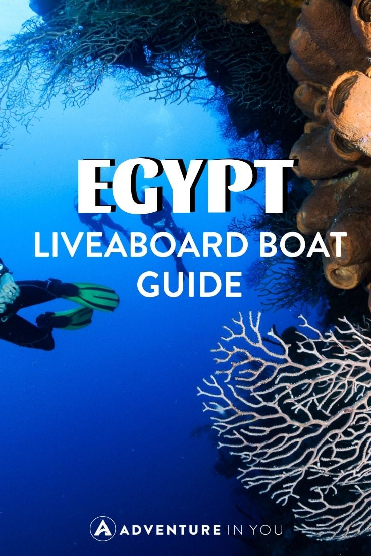 Want to go diving in Egypt? Here are the best liveaboards on the market for a life changing trip.