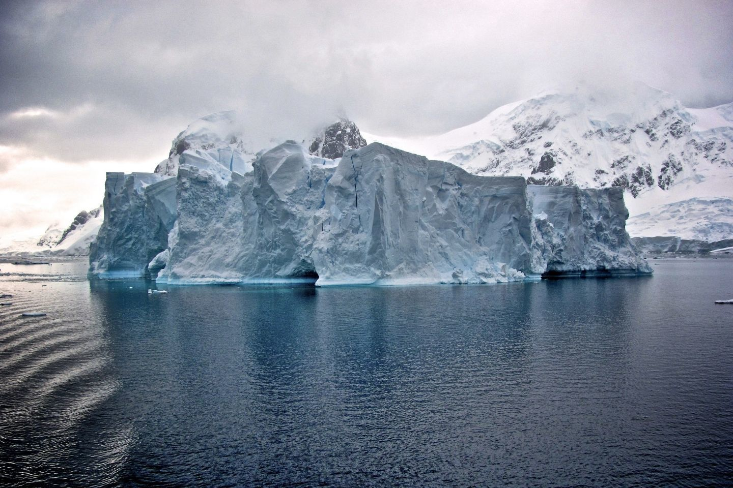 antarctica-adventure-cruise