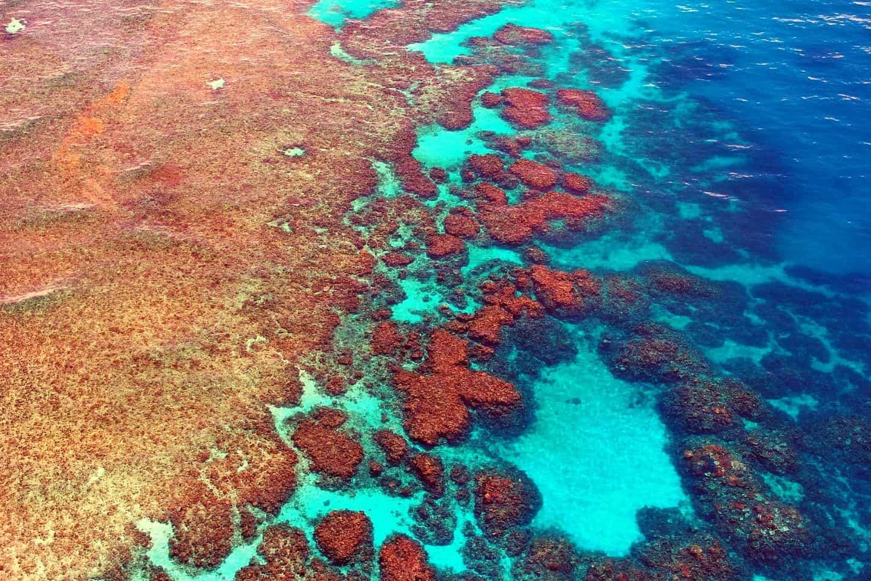 australia-diving