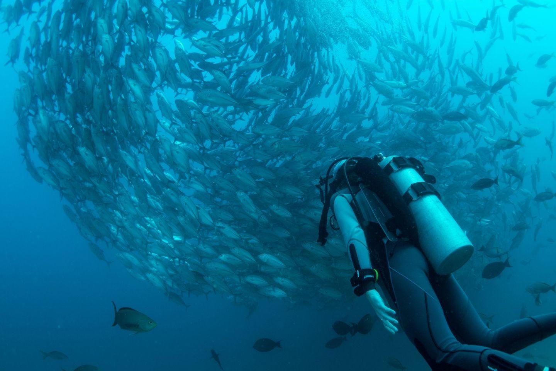 best-dive-destinations