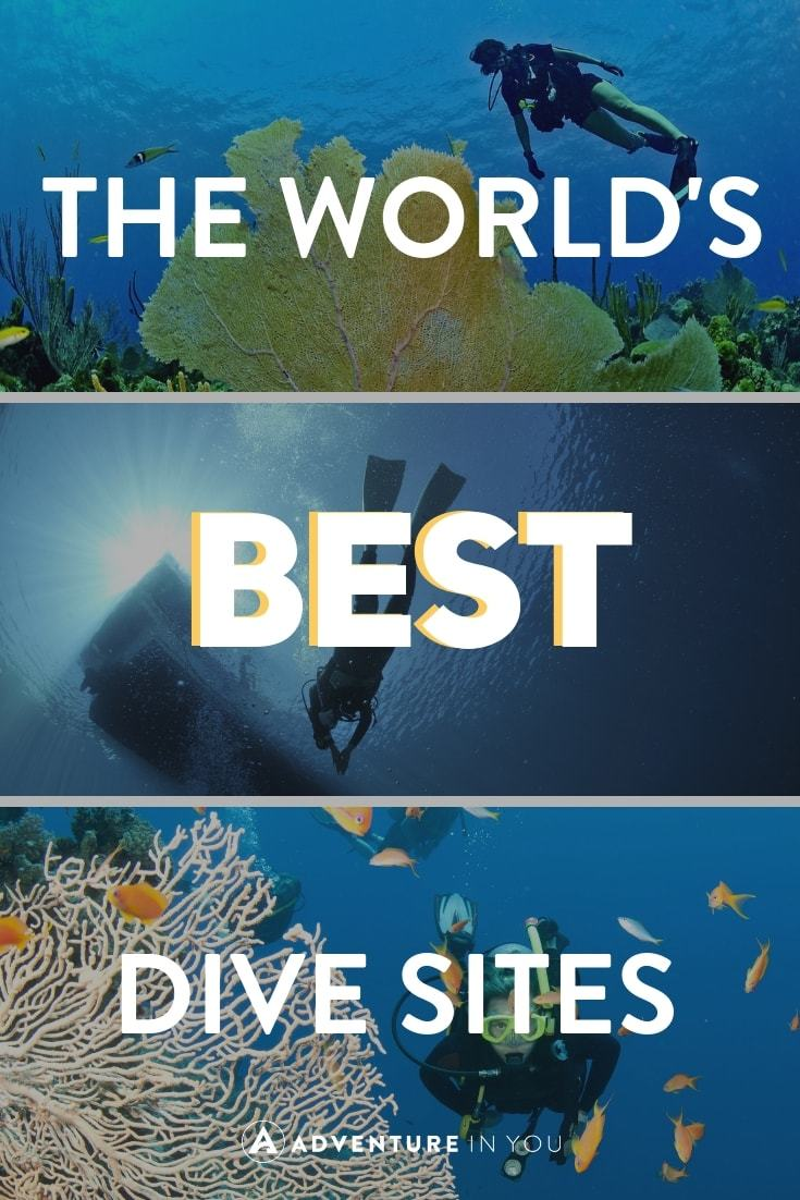 Best Diving Destinations in the World | Add these amazing dive destinations to your diving bucket list! #diving #divesites #discover #explore