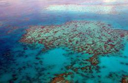 diving-australia-liveaboard
