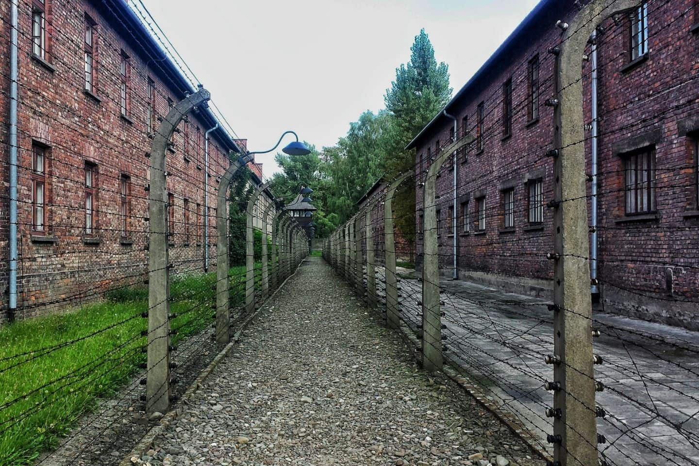 barbed wire fences at auschwitz
