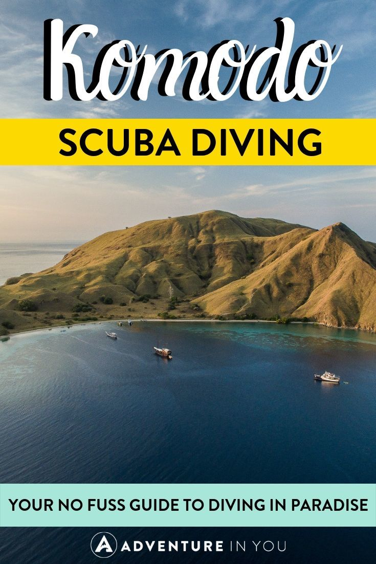 Komodo Scuba Diving | Did you know that the land of the dragons has some of the best scuba diving in the world? Check out our complete guide to diving around these magical Indonesian islands!