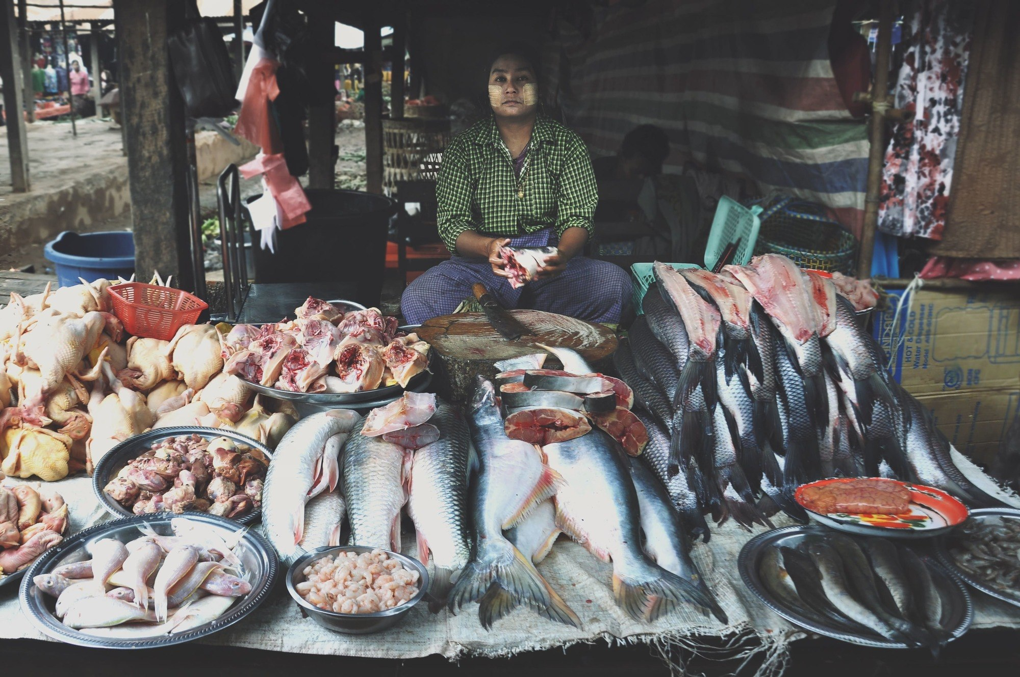 man sitting in front of fish in myanmar