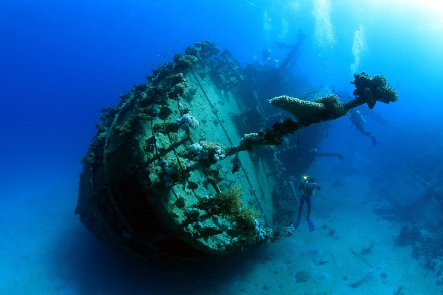 egypt diving: WWII shipwreck in red sea