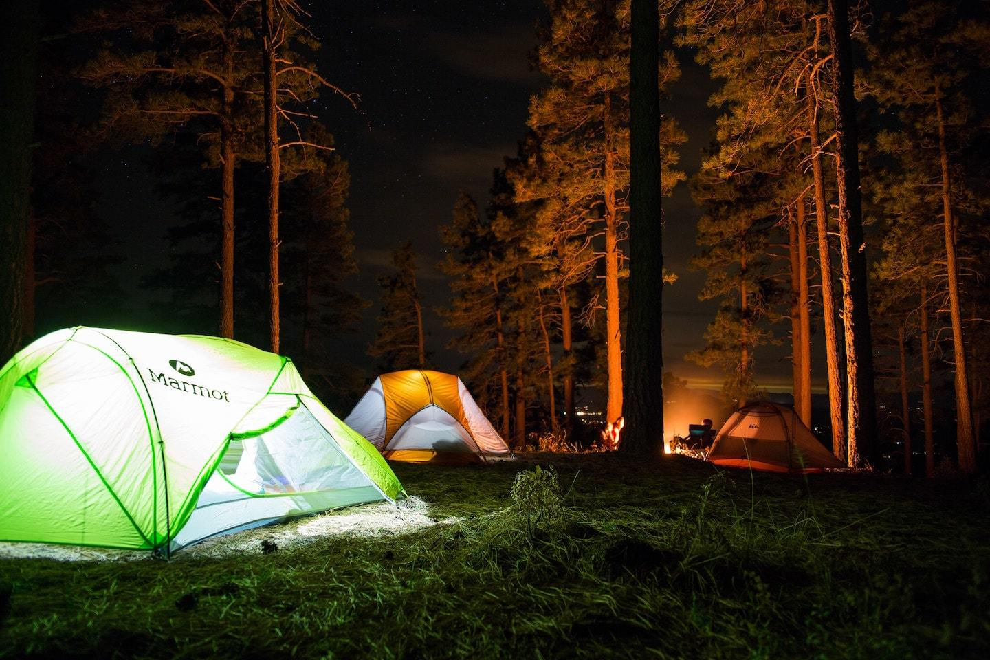camping in forest with trees surrounding tents