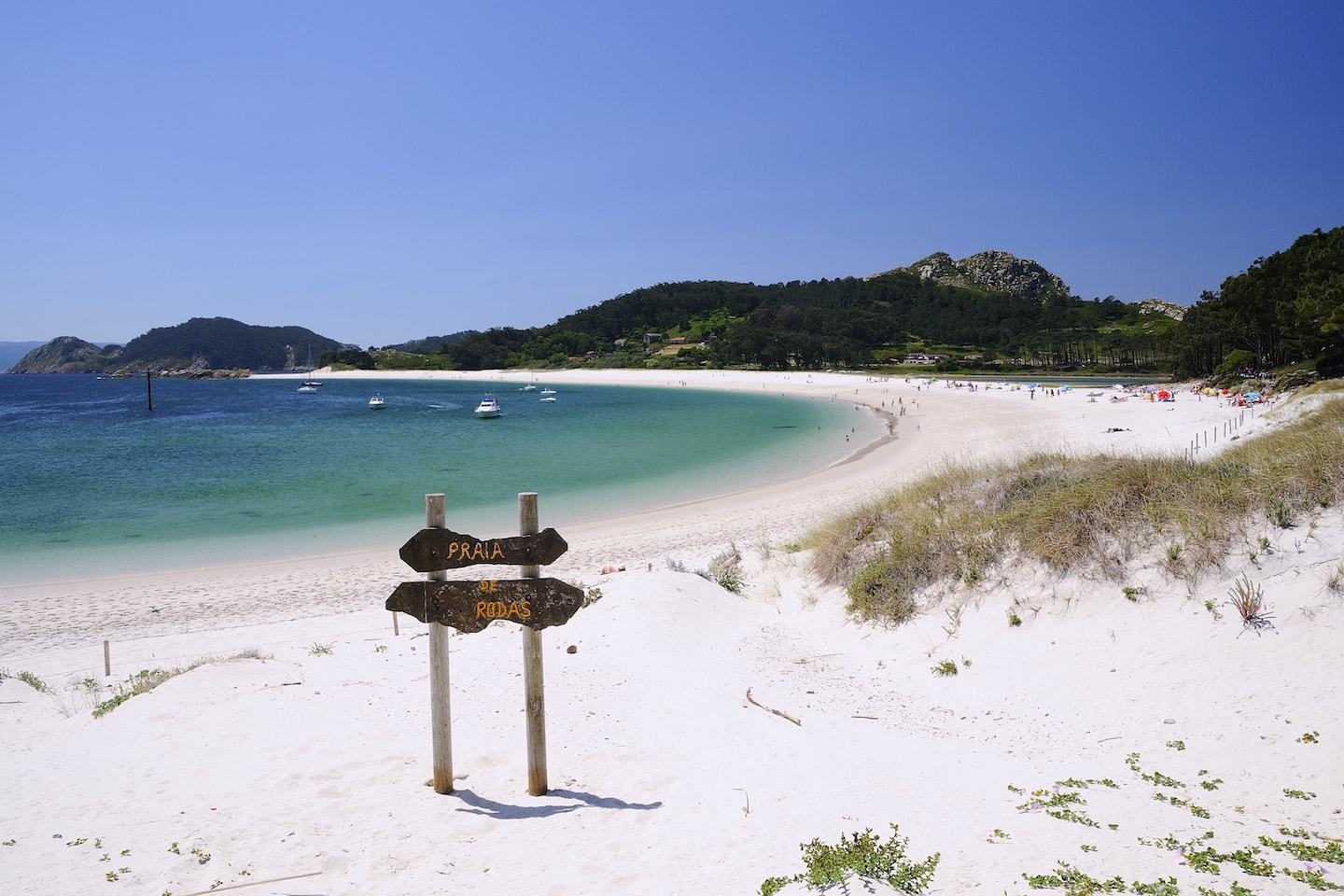 white sand beach with clear blue water