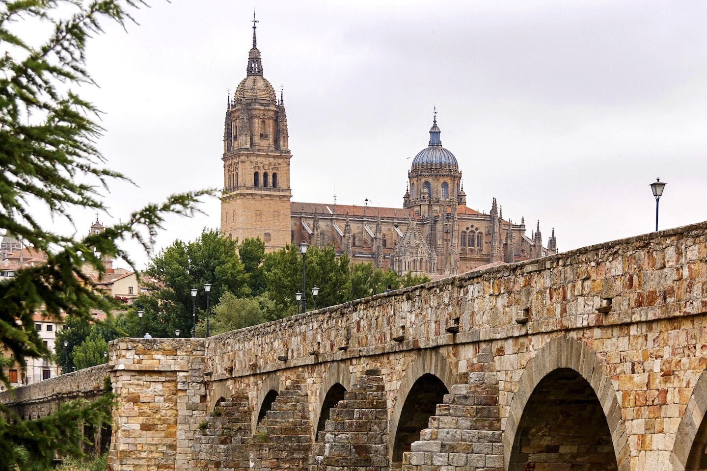 large bridge in front of cathedral and other old buildings in salamanca spain