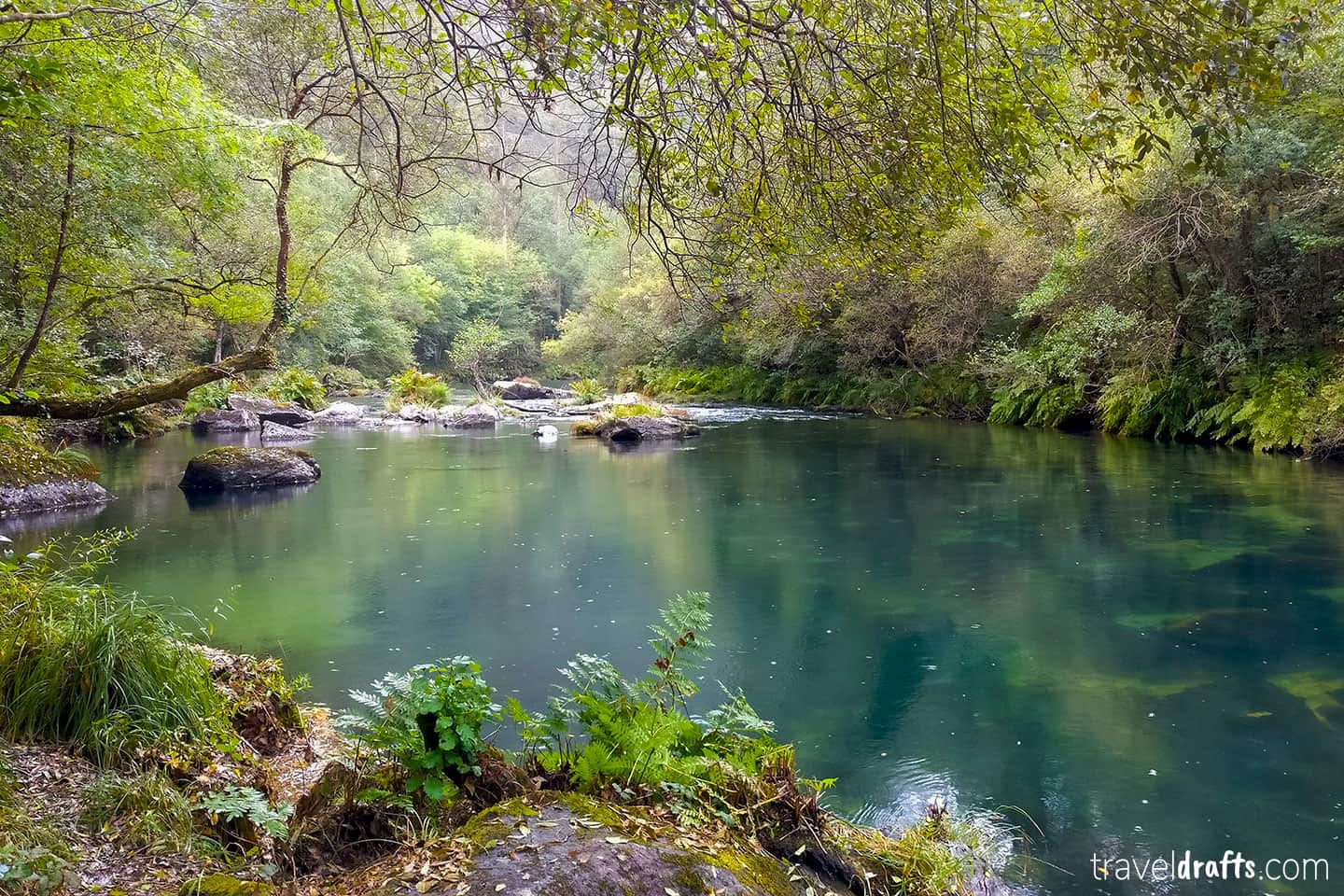 fragas do eume, one of the top things to do in galicia