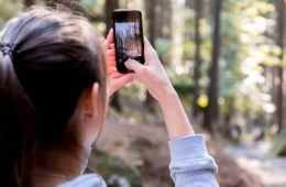 woman taking picture of trees with iPhone