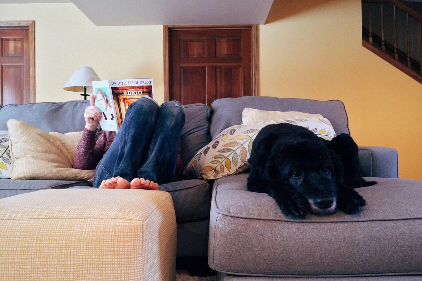 person reading on couch with dog next to them